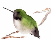 Hummingbird Print -  Black Chinned Hummingbird - Fine Art Painting - Bird Art - Sap Green and Black