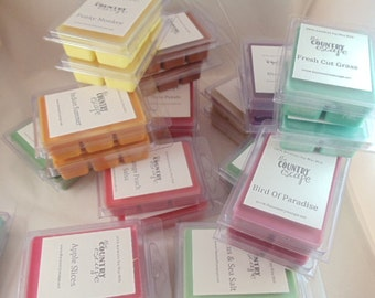 Holiday Season Special Offer - 8 pks Fall and Holiday Soy Wax Melts