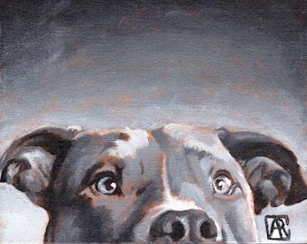 "Pitbull Art Print, Dog Art, Dog Print, Olive of the Greys, 8""X10"" giclee print Wall Art"
