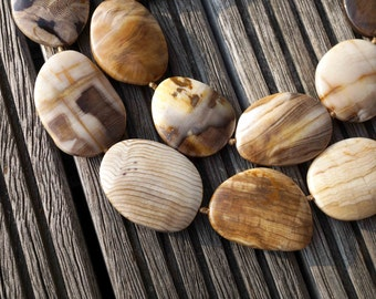 Rare, beautiful & natural Petrified Wood 25-33mm freeform beads (ETB00542)