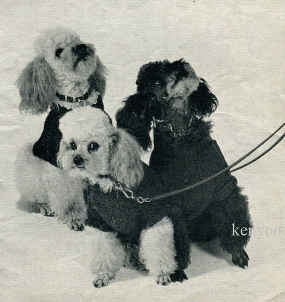 INSTANT Download DOG COAT Knitting Pattern For by KenyonBooks