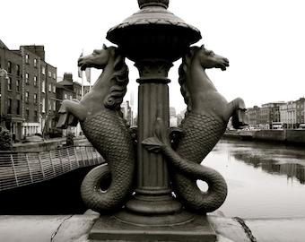 "Dublin photography ""Iron And Salt"", photos of Ireland, seahorses, black and white, nautical, Irish street photography, River Liffey"