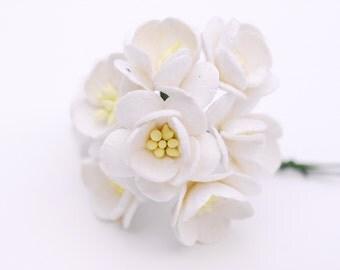 Paper flower, 50 Sakura, paper crafting, white color.