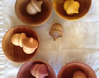 City of Oaks Acorn Sorter (Montessori Inspired)