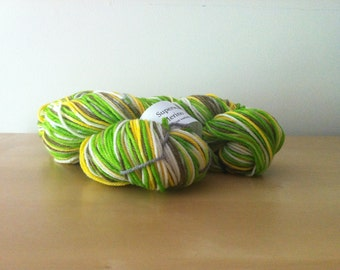 Legend of Zelda - Link - Superwash Merino Hank/Skein - Green/Yellow/Brown/Natural