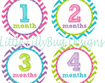 Baby Month Stickers Baby Monthly Stickers Girl Monthly Shirt Stickers Chevron Sketch Shower Gift Photo Prop Baby Milestone Sticker
