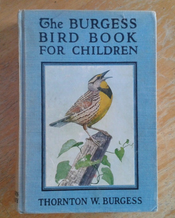 The Burgess Bird Book For Children By Thornton By