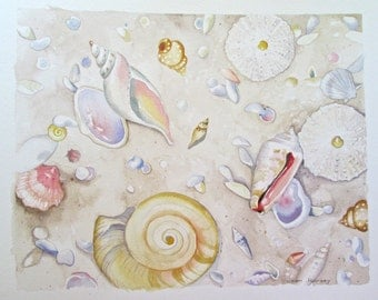 Jewels in the Sand #3  - original watercolor painting of shells in the sand