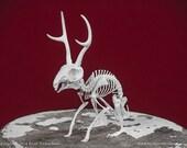 Jackalope Skeleton 3D Print