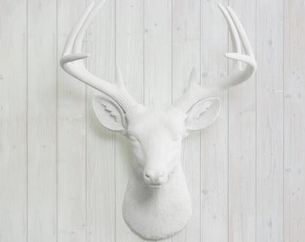 White Faux Buck Mount by Wall Charmers™ Faux Taxidermy - Resin Animal Head Faux Stag Mount Fauxidermy Deer Head Decor Gallery Wall Decor