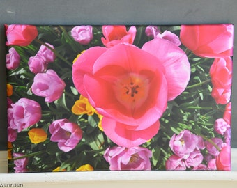 Skagit Valley Tulips ~ Soft Top Thin Wrap
