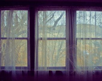 12x18 Window