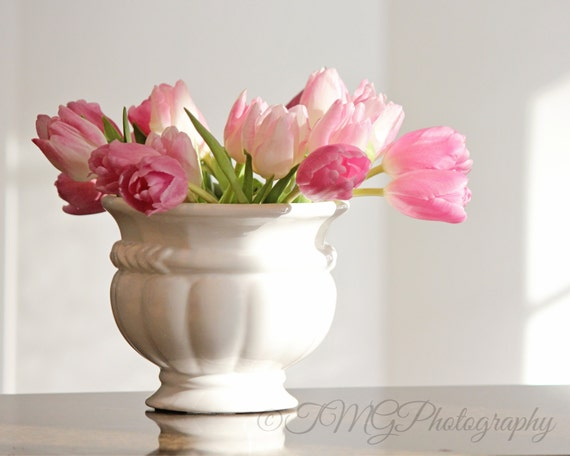 Pink Tulips in Sunlight, Photo Print and Wall Art