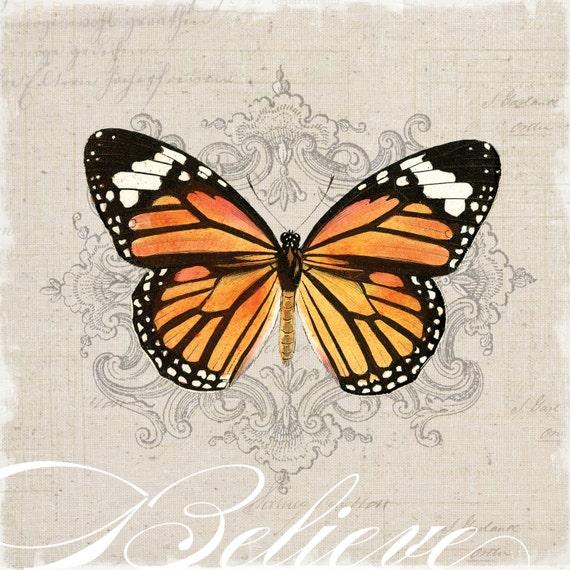 Vintage Butterfly Gicl  233 e Art PrintVintage Butterfly Print