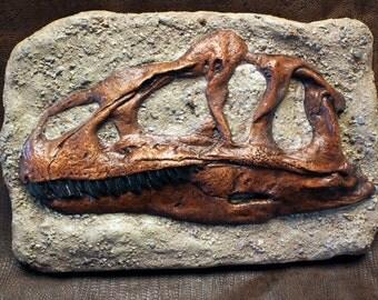 Sculptue Cast Allosaurus Dinosaur Skull