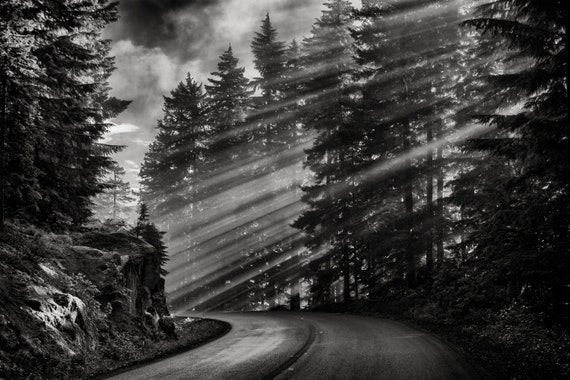 mountain landscape photography black and white. items similar to sunbeams mountain road landscape photography pine trees fall mount rainier fine art black and white wall e