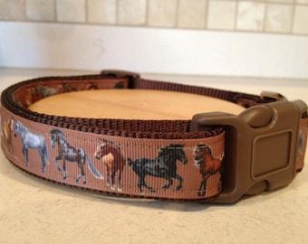 "Horse-themed Large and Medium Dog Collar 1"""