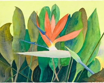 Bird of Paradise - Original Watercolor Art