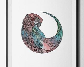 Parrot motif digital print from an original hand drawn illustration