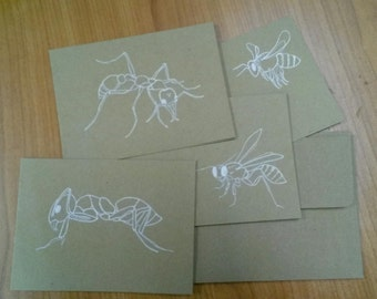 hymenoptera gift cards, blank on the inside, set of four, hand drawn