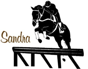 Horse decal-Personalized horse decal-Girls room decorl-Vinyl wall decal-28 X 29 inches