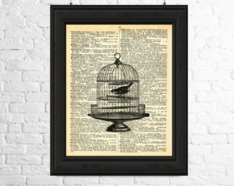 Birdcage Dictionary Page Poster, Dictionary Page Instant Download - Birdcage Printable Art, Birdcage Printables, Printable Bird Art