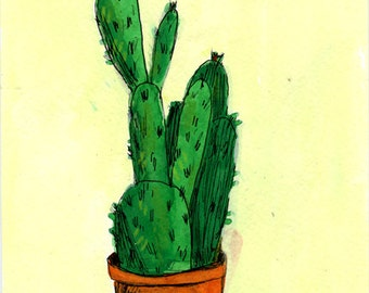 Cactus, drawing on paper