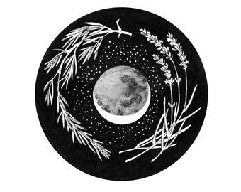 Before the Harvest Moon - Giclee Print Herbs and Cosmos Illustration 5 x 5""
