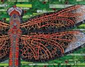Dragonfly 8x10 - Matted Giclée Fine Art Print