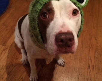 Frog Dog Snood  Knit Pattern