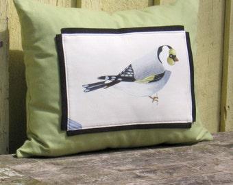 Boudoir Pillow The Troubadour Bird Illustration Rectangular 20 x 16 Ornithology Unique Art Decorative accessory green black white Drawing