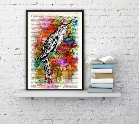 Hummingbird Collage water color Print on Vintage Dictionary Book altered dictionary page illustration book print art ANI108b