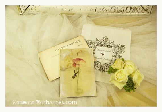 """Postcard France Dijon """"Le renoncule"""" carterie artistique"""