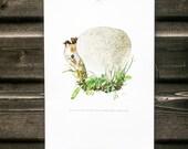 Vintage french botanical print, Calvatia utriformis, Mushroom Print