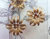 Love Me Daisy Prairie Flower Petals (2 pc)