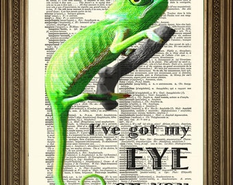 """DICTIONARY ART CHAMELEON: I've Got My Eye on You / Picture Only - Vintage Dictionary Page Art Print (8 x 10"""")"""