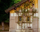 Chateau Versailles Photography, Rustic Farmhouse, Yellow Ochre, Climbing Roses, Pink, French Dream Home, Romantic, Wall Decor, Farm, Cottage