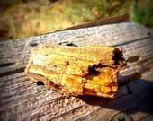 GENUINE  Utah PETRIFIED Wood SPECIMEN - Random Pick