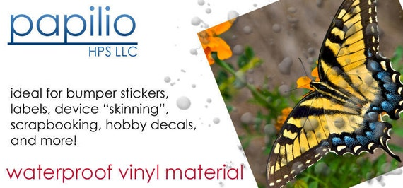 Dashing image with papilio printable vinyl