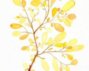Yellow Seaweed art print, Botanical and nautical watercolor illustration - Beach cottage decoration - Giclee print on watercolor paper