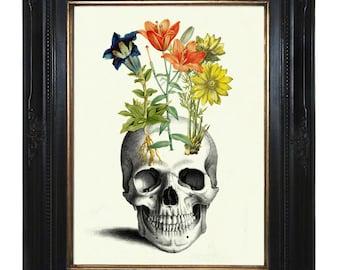 Flowers grow on human Skull Anatomy morbid Botany Victorian Steampunk Gothic Art Print Halloween