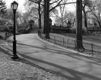 "Central Park, New York Photography, 8x10 Fine Art Print, Black and white, ""Central Park Path"", home decor"