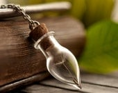 Wish holder, wish necklace, dandelion necklace, nature necklace, bottle necklace, dandelion seed necklace, best friend necklace, make a wish