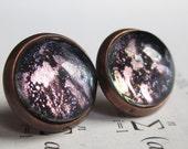 Prism - Earring studs - science jewelry - science earrings - galaxy jewelry - physics earrings - fake plugs - plug earring - nebula studs