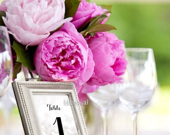"4x6"" - Printable silver table numbers 1-40, wedding table numbers, black & silver wedding, winter wedding table numbers -wed009 Norah"