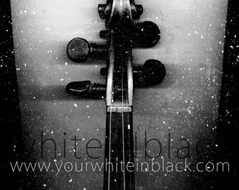 whiteINblack project - Violin - Digital Download 300 dpi