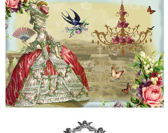 Souvenirs de Versailles, French, romantic, birds, chandelier,  French chic,  Wickedly Lovely, Marie Antoinette inspired blank greeting card.