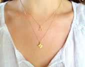 Texas 24K Gold Plated Sterling Silver Necklace