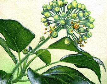 Ivy Painting, acrylic on deep-edged canvas