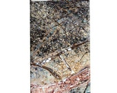 iPhone / Cell Phone Case - Colorful Mineral Photograph - Rainbow Marble